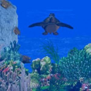 3D Sea Turtle Paradise