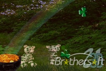 3D Dancing Shamrock Teddy Bear