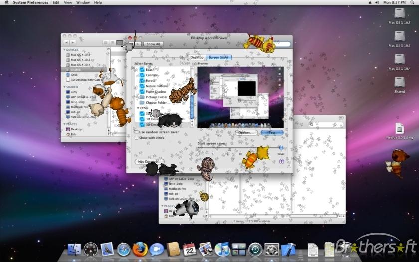 3D Desktop Kitty Cats Screen Saver For Mac