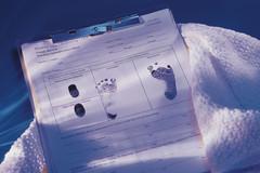 lookmoon望月树型论坛系统