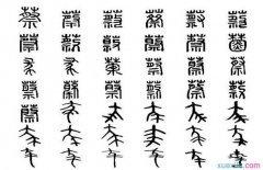 汉语言文学专业本科生大学毕业总结范文