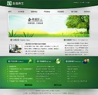 绿色企业网站系统 1.0