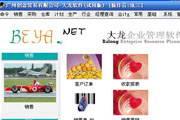 大龙天骄快餐用品商务管理软件