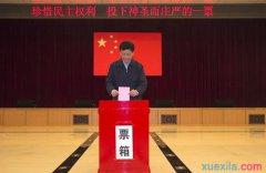 村党组织换届选举工作总结