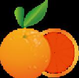 橙子518B2B多用户商城(创想商务B2B)