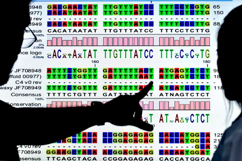 genomedata