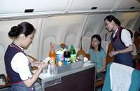 航空公司实习小结