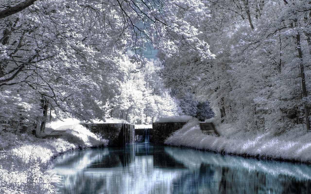 Maine Winter Scenes ScreenSaver