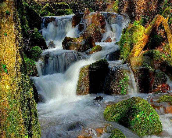 Freebking River Screensaver
