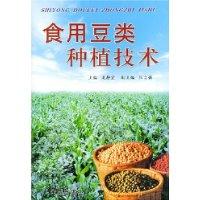北京市豆类种植收购合同范文