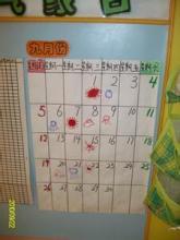 幼儿园大班学期计划范文