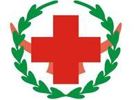 医院保卫科工作总结