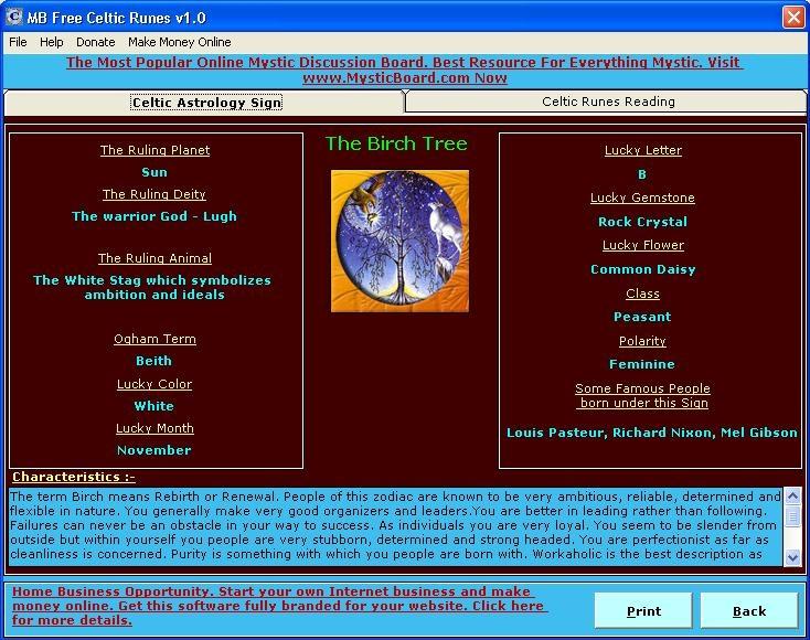 MB Celtic Runes Software