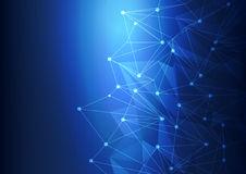 fankuan8蓝色网络科技公司系统 1.1