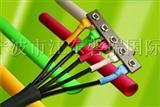 Bug on a Wire(虫虫电线求生)