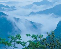 浙江双峰森林公园导游词