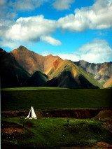 内蒙古西鄂尔多斯国家级自然保护区