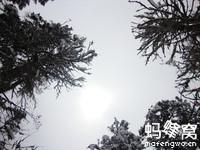 四川理县米亚罗羌寨导游词