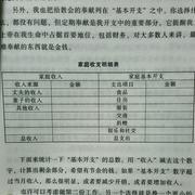 财务预算与预算执行情况分析总结