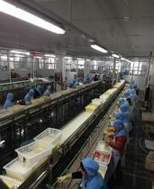 水果罐头加工厂...