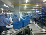 世纪迪安水产业冷库管理系统网络版