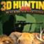森林打猎 免费版