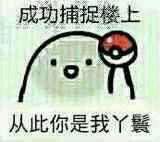 成功捕捉楼上QQ表情包 免费下载