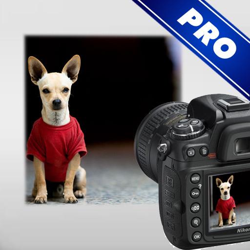 图片合成软件(Photo Montage Guide)