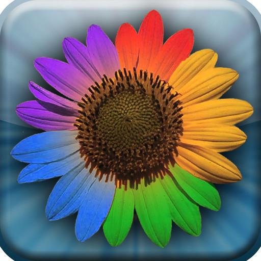 Picasa Photo Viewer