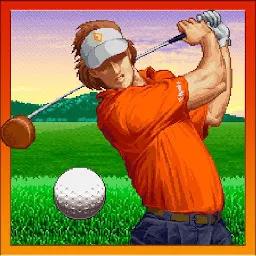 Verti Golf 虚拟...