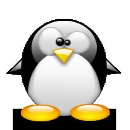 Penguin MSN