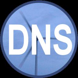 DNS Watcher