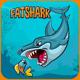 Shark DB Expert