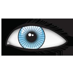 Image eye 9.1