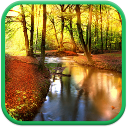 Falling Autumn Leaves Screen Saver