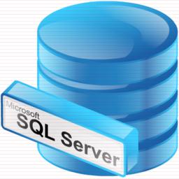 Copy Database for SQL Server Professional