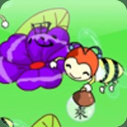 蜜蜂采蜂蜜