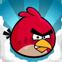 小鸟的愤怒