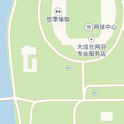 公园练瑜伽