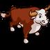 公牛与母牛