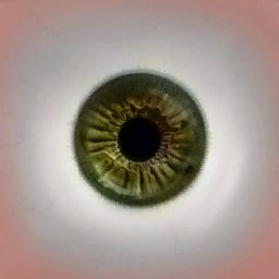 Green Eyes v1.0