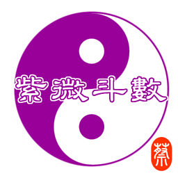 紫薇斗数 专业版...