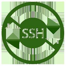 Bitvise SSH Cli...
