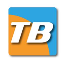 thinBasic
