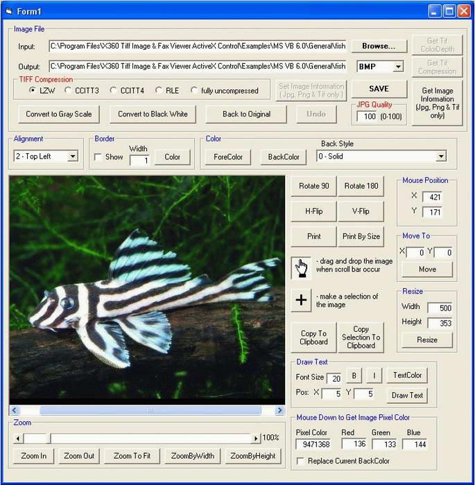 X360 Exif & Tiff Tag Viewer ActiveX OCX截图1