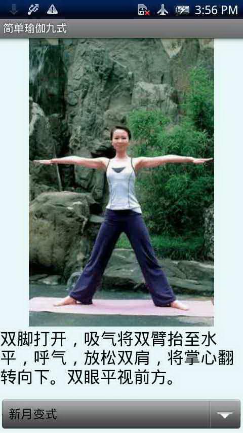 简单瑜伽九式截图1