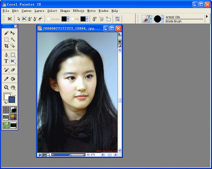 Corel Painter截图1