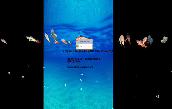 3D Bocaccio Rockfish Screensaver