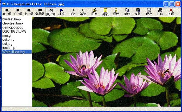 图像控件(cqmimg60.ocx)