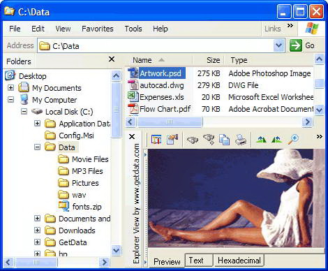 File Viewer For Mac截图1